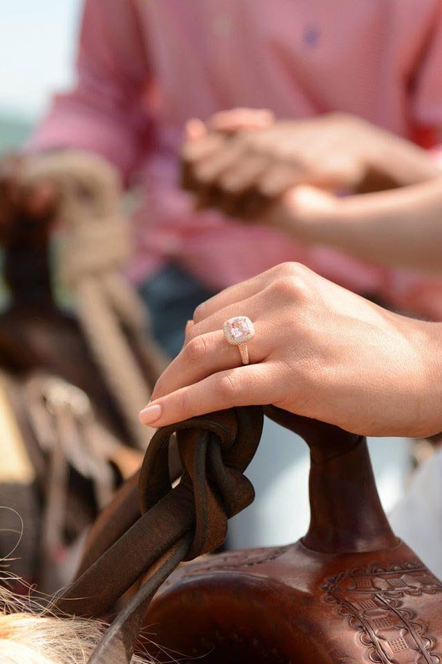 Image-7 Virginia Vineyard Proposal