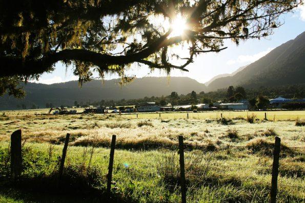 Greenery-Breathtaking-Tree-Field-Green-Scenery-1565939-1-595x397 10 Tips to Plan a Kentucky Styled Southern Wedding