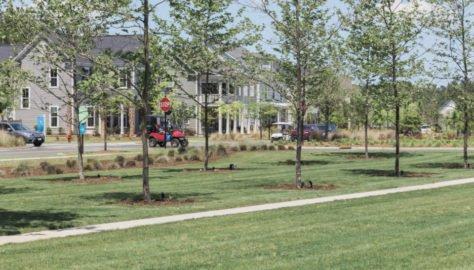 Nexton Homes___Community0221